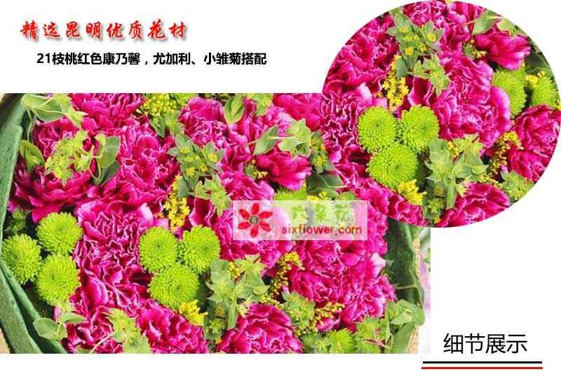 21朵桃红色康乃馨,尤加利、小雏菊搭配(或者同色系配花)