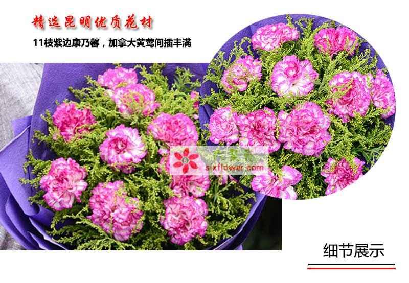 11枝紫边康乃馨,加拿大黄莺间插丰满;