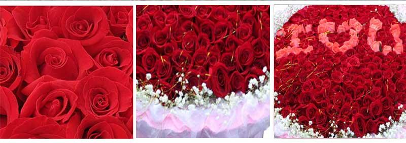 """365枝玫瑰,中间粉色玫瑰组成""""I O U""""字样,周围满天星点缀;"""