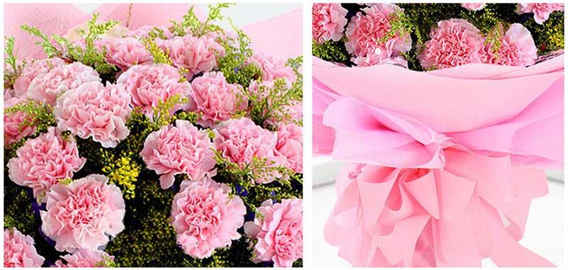 19枝粉色康乃馨,加拿大黄莺间插;