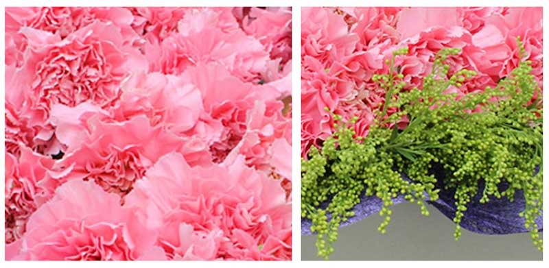 精选19枝粉色康乃馨,黄莺点缀;