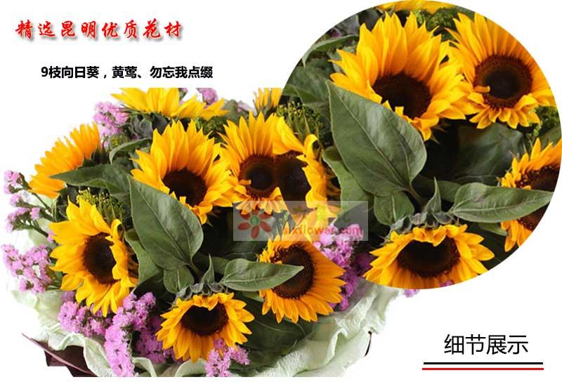 9枝向日葵,黄莺、勿忘我点缀;