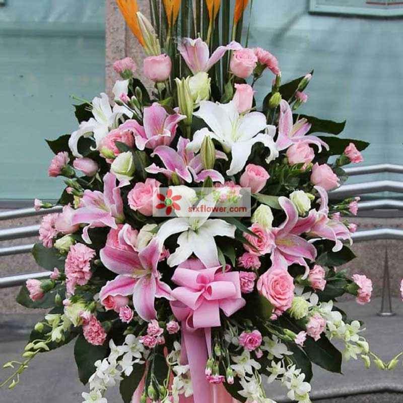 粉玫瑰、粉色康乃馨、粉百合、白百合、白色桔梗、天堂鸟、洋兰;