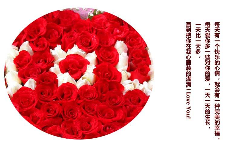 红玫瑰74朵,白玫瑰25朵,白玫瑰围成I O U 字样,满天星适量
