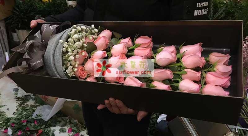 33枝戴安娜玫瑰,满天星搭配