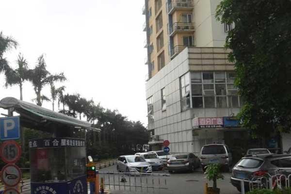 深圳布吉百鸽路花店