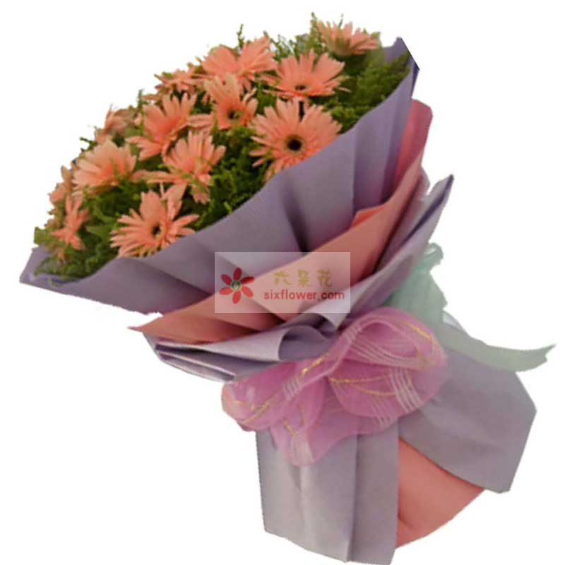 22朵橙色扶郎花,黄英丰满