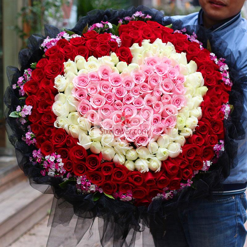 爱的关怀/199支玫瑰