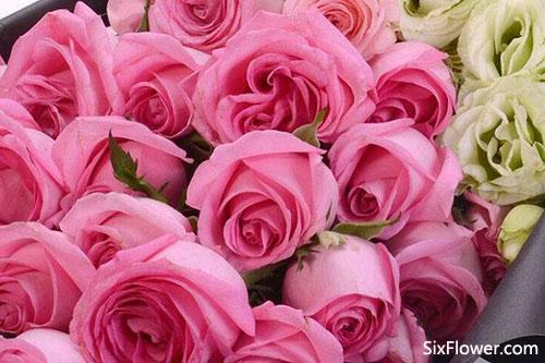 刚认识的女朋友520送什么花好?刚认识的女朋友520送几朵花?