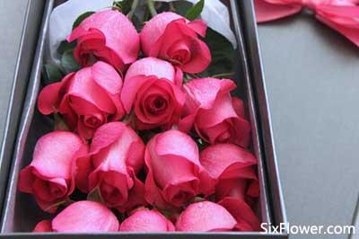 认识4个月的女孩送什么花好?认识4个月的女孩送几朵花?
