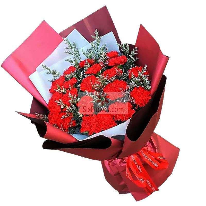 19朵红色康乃馨,祝愿好运好心情