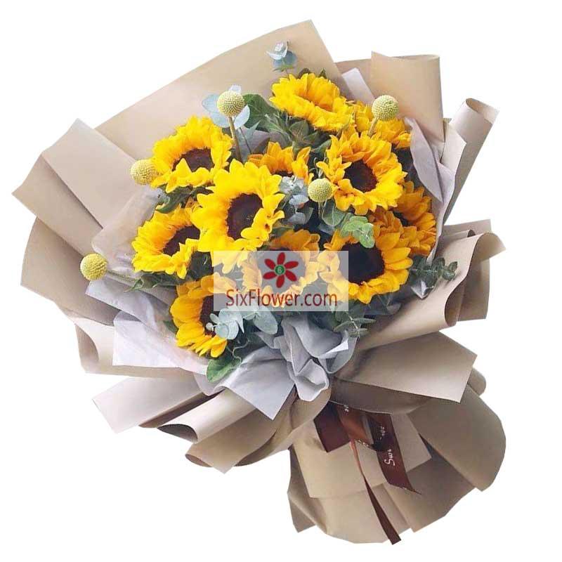 10朵向日葵,愿您健康快乐