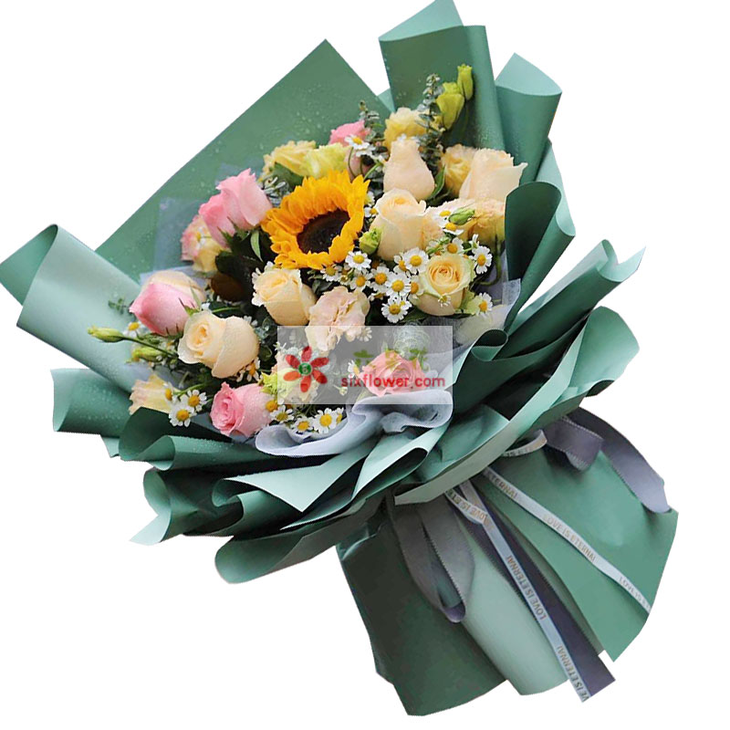 11朵玫瑰向日葵,欢乐追随着你