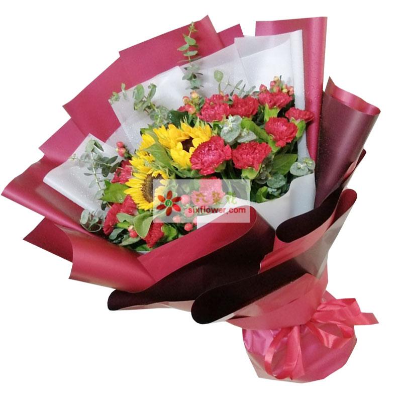 18朵红色康乃馨向日葵,深深的问候