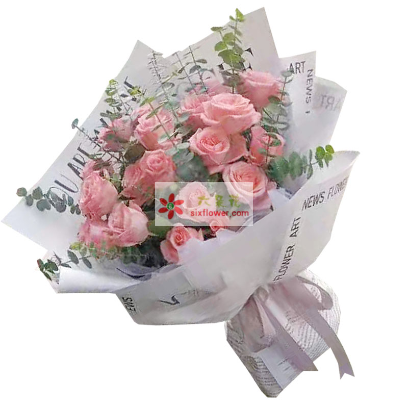 19朵戴安娜粉玫瑰,每一天都在你身边