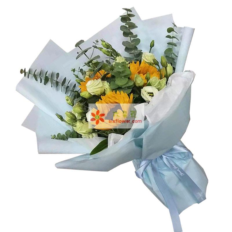 3朵向日葵11朵桔梗,你在我的心灵里