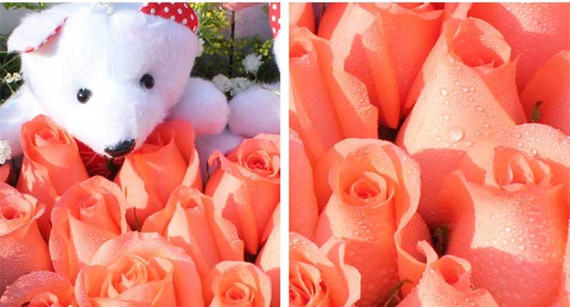 33枝粉玫瑰,黄莺满天星外围,随机赠送2只小公仔;