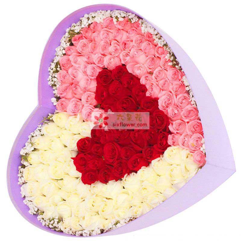 99枝玫瑰(粉+白+红),周围点缀相思梅