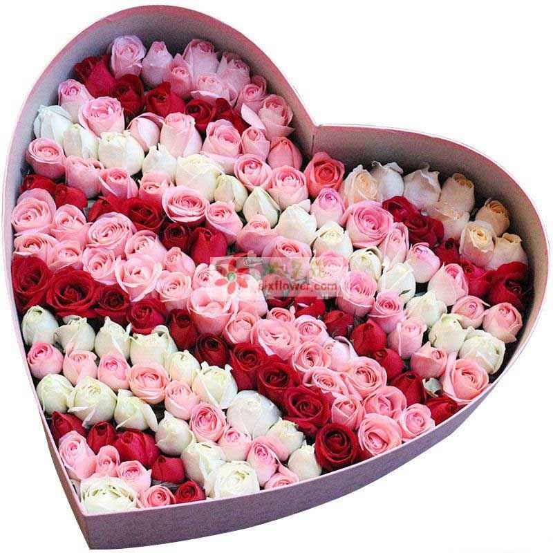 99枝混搭玫瑰(红+白+粉玫瑰),参考图片设计摆放
