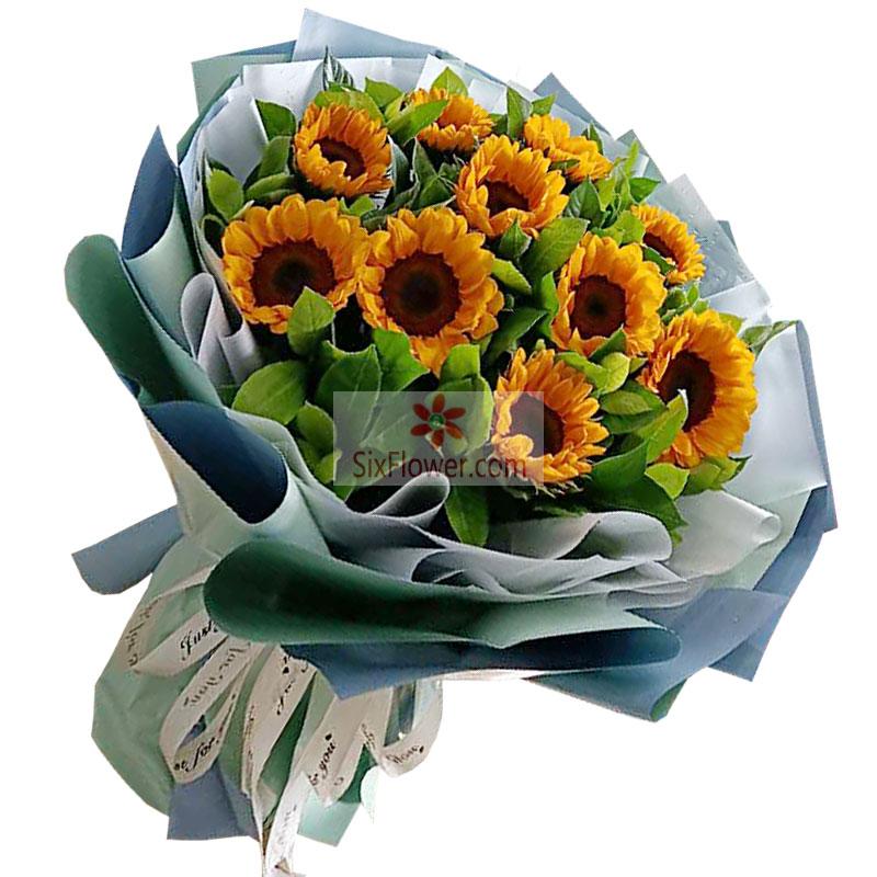 10朵向日葵,你是我全部的喜悦