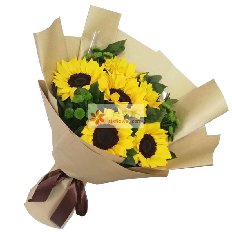 6朵向日葵,愿你幸运永远