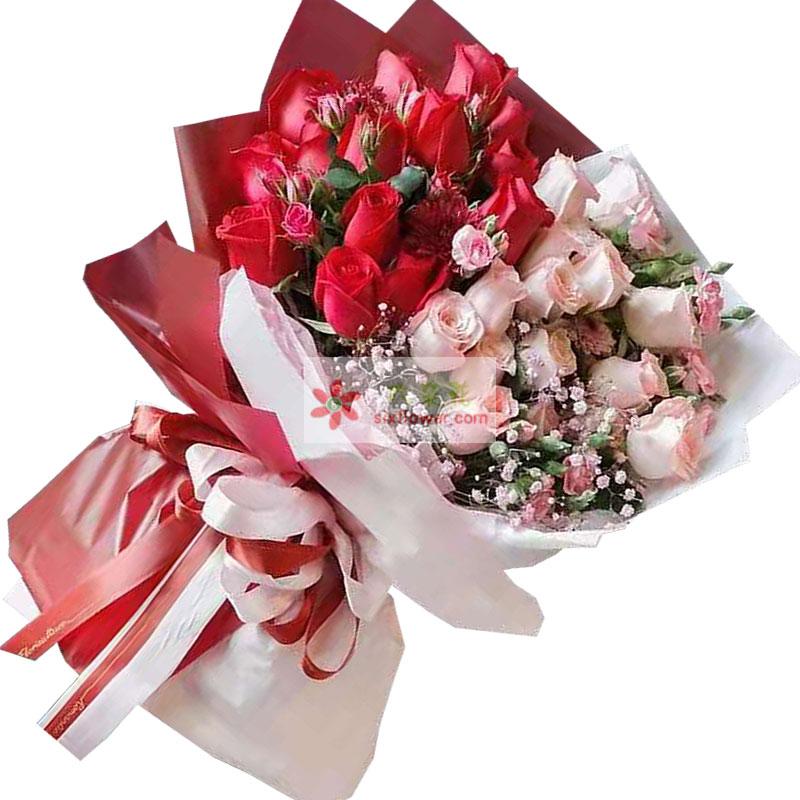 33朵玫瑰其中红色粉色搭配,永远幸福的人