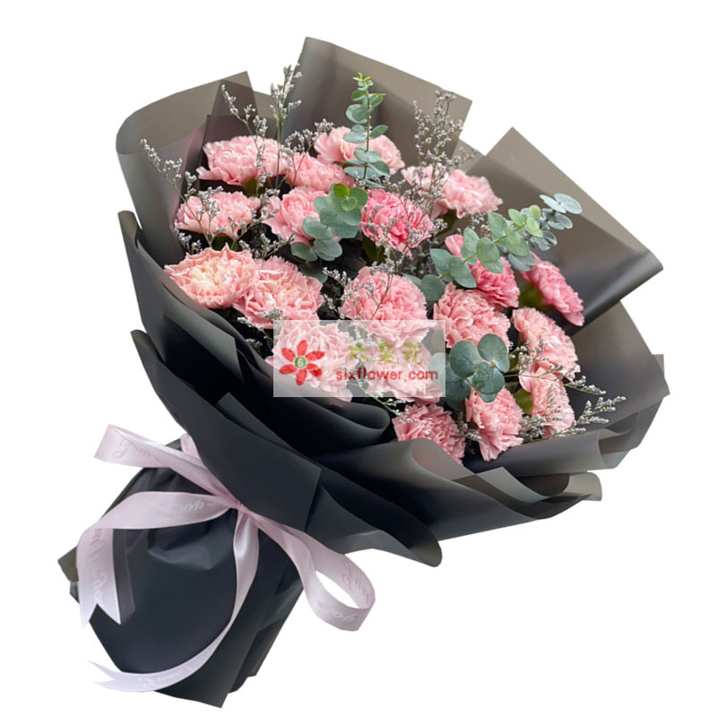 19朵粉色康乃馨,无限的祝福