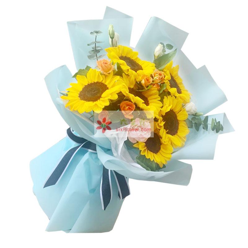 6朵向日葵,爱伟岸如青山
