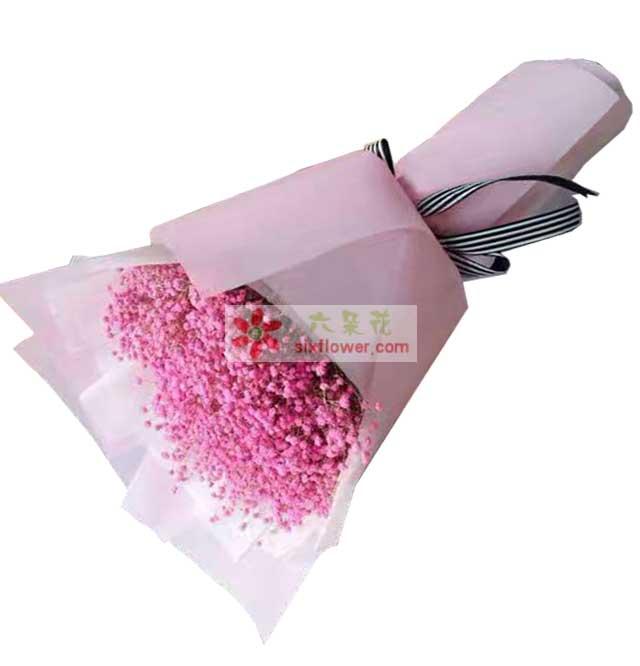 粉色满天星一大扎