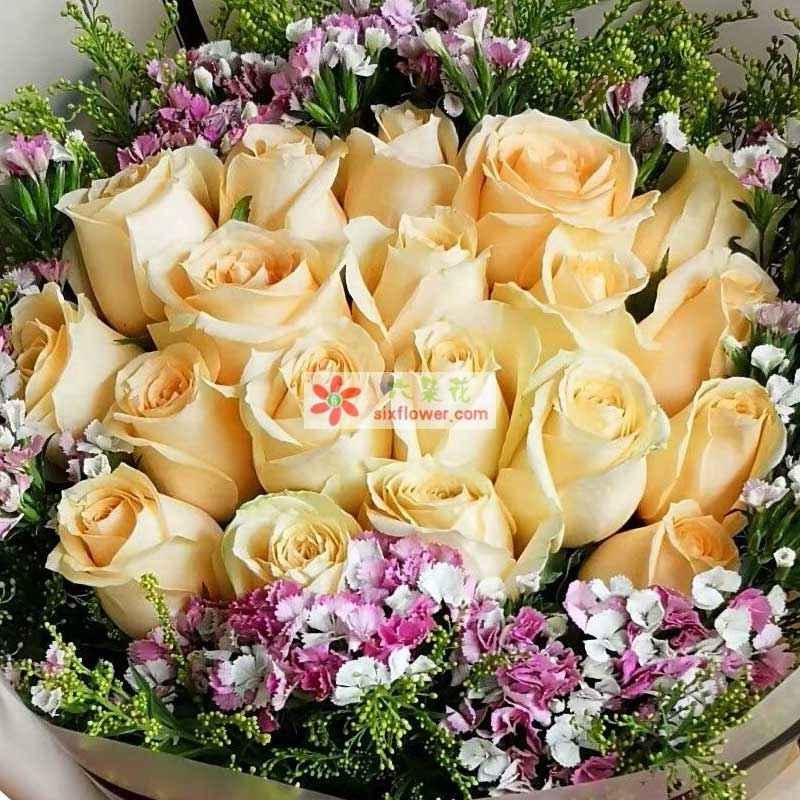 19枝香槟玫瑰,周围相思梅、黄英丰满