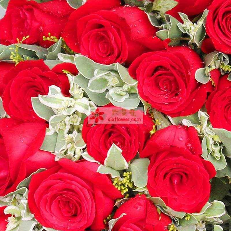 19枝红玫瑰,搭配叶上金、黄莺点缀