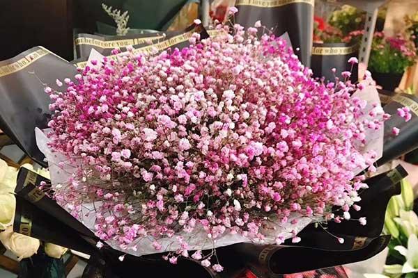 满天星花束之粉色系列推荐