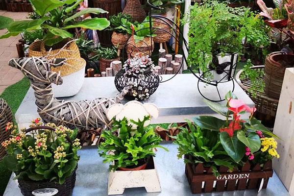 找武汉的花店不用东奔西跑