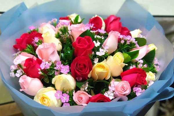 成都花店:19枝玫瑰花推荐,天长地久拥有你!