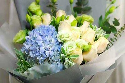 11枝玫瑰花推荐