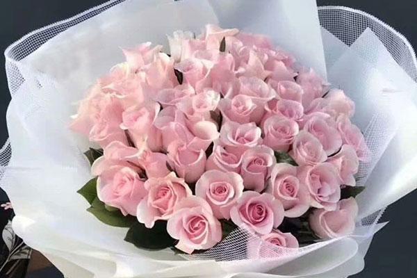闺蜜过生日送什么花?姐妹过生日送什么花?