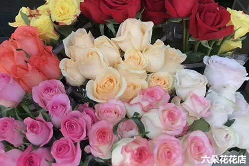19枝玫瑰的花语是什么?