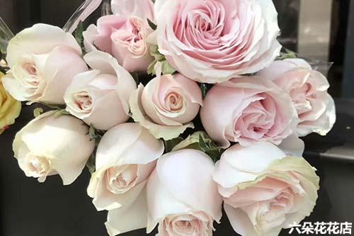 11枝玫瑰花的花语是什么?