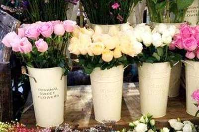 大连普兰店市花店玫瑰花推荐,普兰店市玫瑰花快速送到!