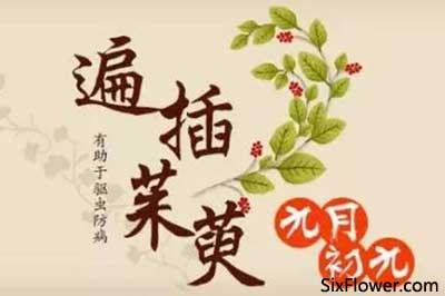 宁波奉化区重阳节送花,2020年奉化区重阳节送花上门服务!